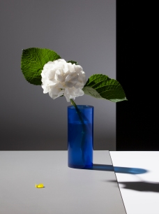 GADeluxe004_Dobbert_some_flowers_HW_media